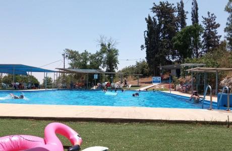 בריכה ❤ פתיחת עונת הקיץ